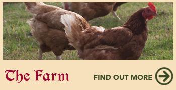 the_farm_home